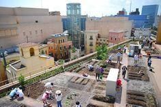 Japão inaugura hortas urbanas em estações de trem,Courtesy of popupcity.net
