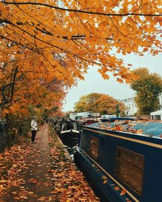 Autumn in Little Venice, London, England by Marco Lamberto