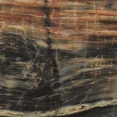 Formica® Brand Laminate - Petrified Wood