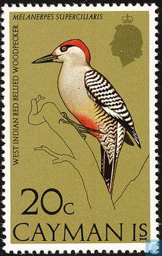 Islas Caimán 1974 - Pájaro Carpintero Jabado especie de ave de Cuba, Bahamas, Islas Turcas y Caicos y Gran Caimán. Pertenece a la familia Picidae del orden Piciformes.