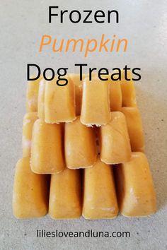 Puppy Treats, Diy Dog Treats, Homemade Dog Treats, Healthy Dog Treats, Dog Biscuit Recipes, Dog Food Recipes, Easy Dog Treat Recipes, Maui, Frozen Dog Treats