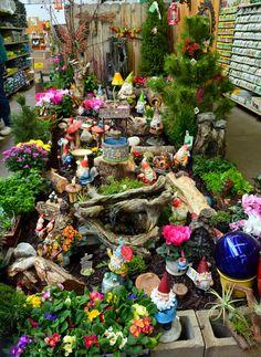 Best fairy garden shown - Google Search