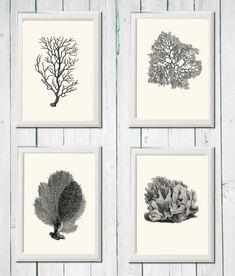 Coral print 4 art sea vintage printables digital file INSTANT