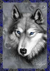 free animated wolf gifs | Graphics » Wolves Graphics