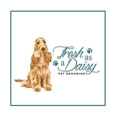Fresh as a dasiy Watercolor Cake, Watercolor Flowers, Dog Grooming Salons, Salon Ideas, Logo Ideas, How To Find Out, Daisy, My Etsy Shop, Logo Design