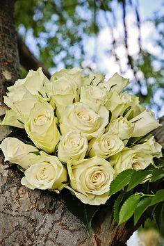 Wedding Flowers #weddingflowers Aj Photography, Wedding Photography, Wedding Flowers, Weddings, Rose, Plants, Wedding Shot, Pink, Wedding