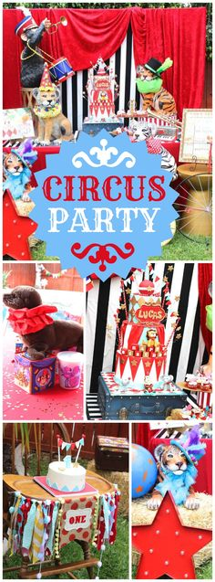How cool is this vintage circus party! See more party ideas at CatchMyParty.com!
