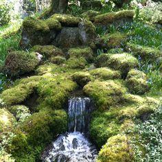 In the Japanese Garden, Butchart Gardens, Victoria BC, Canada