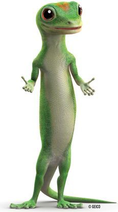 Latest Pic Geico Car Insurance Concepts Suggestion Though There