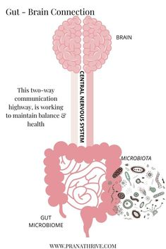 Read this article to learn more about the gut-brain connection, and discover the surprising truth about how your gut bacteria could be affecting your mood. Nutrition And Mental Health, Holistic Nutrition, Brain Health, Health Facts, Dental Health, Gut Health, Health And Wellbeing, Brain Connections, Gut Brain