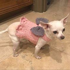 7491e29366f0 Peggy Jacobs ha añadido una foto de su compra Vêtements Animales, Suéteres Para  Perros,