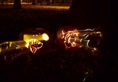 Pumpkin, alabai, german shepherd, Halloween