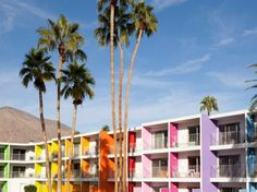 In the hot, hipster-filled desert, Palm Springs' Saguaro is a vibrant-colored oasis with a pool surrounded by beds of bright desert flowers.