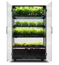 Hydroponic Farming, Hydroponic Growing, Aquaponics Diy, Aquaponics System, Indoor Farming, Indoor Gardening, Hydroponic Equipment, Aquaponics Greenhouse, Container Gardening