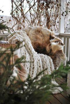 HANNAS: winter på bron