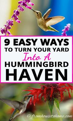 These tips for how to make a hummingbird garden are great! Learn what flowers, feeders and design elements you will need to turn get hummingbirds to move into your backyard. #fromhousetohome #gardeningtips #gardenideas #hummingbird #bird