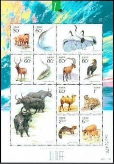 China Stamps - 2001-4 , Scott 3091 Key Wild Animals under First-Grade State Protection in China(II) - MNH, VF dealer stock by Great Wall Bookstore, Las Vegas. $5.38. China has one of the biggest varieties of wildlife in the world. But some of the rare species are on the verge of extinction. To protect them, China has stipulated the Wildlife Protection Law and built nature reserves. With the concern of the whole of society, the environment for their survival has been im...