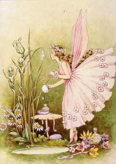 """Illustration is out of date range I just loved it and wanted to pin it """"Preparing for the Fairy Ball,"""" by Ida Rentoul Outhwaite Fairy Dust, Fairy Land, Fairy Tales, Fantasy Magic, Fantasy Art, Elfen Fantasy, Fairy Tea Parties, Tea Party, Fairy Pictures"""