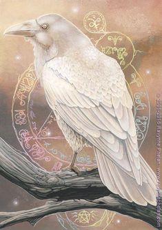 58 Trendy Ideas For Black Bird Fantasy Art Illustrations Art And Illustration, Art Illustrations, Crow Art, Bird Art, Fantasy Kunst, Fantasy Art, Choucas Des Tours, Rabe Tattoo, White Raven