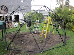 William (Mohawk Bill) Randazzo - Customer Reviews of Our Geodesic Dome Greenhouse Kits - by Zip Tie Domes