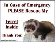 I have this sign on my car, and by my front door.  Ferrets can't bark and if in a cage can't run.  If you have Ferrets that you love, this would be a great investment!