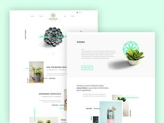 Swalmen Planten - Succulent Website by Victor Belinatti Best Picture For Web Design tips For Your Taste You are looking for something, and it is going to tell you exactly what you are looking for, and Online Web Design, Web Design Tips, App Design, Design Concepts, Web Layout, Layout Design, Minimalist Web Design, Web Mockup, Composition Design