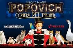 Popovich Comedy Pet Theater at Planet Hollywood Resort and Casino, Las Vegas, Family-friendly Shows Las Vegas Shows, Las Vegas Concerts, Las Vegas Tours, Vegas Activities, Las Vegas With Kids, Hollywood Theater, Planet Hollywood, Cat Sitting, Cirque Du Soleil