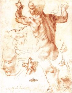 Page: Study to The Libyan Sibyl Artist: Michelangelo Completion Date: c.1508 Place of Creation: Rome, Italy Style: High Renaissance Series: Sistine Chapel Paintings Genre: sketch and study Technique: chalk Material: paper Tags: female-nude