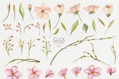 Floral Fantasy Watercolor - Illustrations - 4