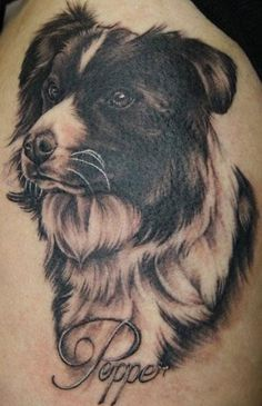 dog tattoos | Border Collie Dog Tattoo : Tattoos :