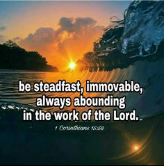 Steadfast in the Gospel 🧠🙏 Kindness Scripture, Scripture Quotes, Bible Scriptures, Strong Faith, All That Matters, Religious Quotes, Uplifting Quotes, Inspirational Thoughts, Good Thoughts
