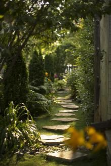 Beautiful gardens: A storybook garden | She uses lots of Irish moss as ground cover.  I need to look into that.