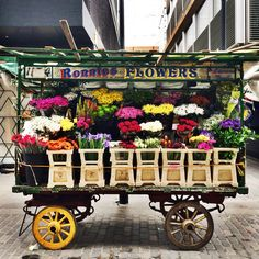 Hello Monday! Here are some flowers for you all, straight off Ronnie's cart in Berwick Street Market - one of London's oldest markets in the heart of #Soho...Can you smell them?