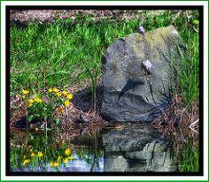 Badespaß mit Bauchplatscher - Have Fun :-) -  Pixelfaxe/Flickr Garden Sculpture, Photo And Video, World, Outdoor Decor, Nice Asses, The World, Peace, Earth