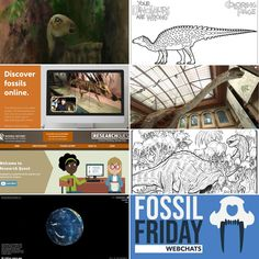 Free Resources During - I Know Dino: The Big Dinosaur Podcast How To Stay Healthy, Shelter, Tours, Thoughts, Education, History, Big, Free, Historia