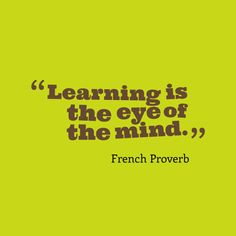 Learning is the eye of the mind.