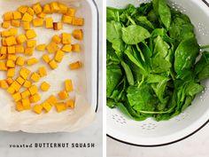 Vegan Butternut Squash Stuffed Shells