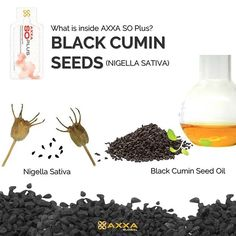 – Since ancient time, the black cumin seed is considered as an all healer. It is quite well known to heal small term illnesses su Nigella Sativa, Asthma, Healer, Seed Oil, Health And Nutrition, Allergies, Seeds, Remedies, Instagram Posts