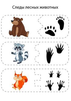 Паззлы, разрезанные картинки Animal Activities, Montessori Activities, Kindergarten Activities, Activities For Kids, Childhood Education, Kids Education, Forest Animals, Woodland Animals, Animal Footprints