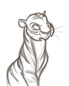 David boudreau character design drawings, art drawings и ani Animal Sketches, Art Drawings Sketches, Cartoon Drawings, Animal Drawings, Cool Drawings, Tiger Cartoon Drawing, Manga Drawing, Character Drawing, Comic Character