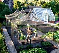 Peaked fruit cages. And check  out that beautiful greenhouse in the background. It has a foundation.