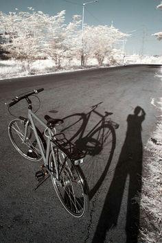 sepeda bisa jadi teman & objek menarik buat diapain aja