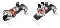 Photo about Link dumbbells from behind the head. Exercising for bodybuilding Target muscles are marked in red. Initial and final steps. Illustration of exercising, target, dumbbells - 43722841 Gym Chest Workout, Sixpack Workout, Gym Workout Tips, Chest Workouts, Dumbbell Workout, Fitness Workouts, At Home Workouts, Fitness Tips, Chest Exercises