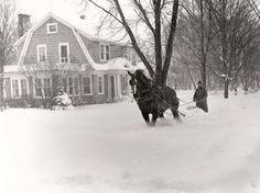 Horse Drawn Sidewalk Snow Plow Jamestown, NY