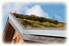 Green roofs improve thermal performance. Houses with green roofs retain cool air all summer long! And they keep homes warm throughout the winter. Green roofs improve ambient air quality. Indoor air is typically far more polluted than outdoor air. In addition, green roofs improve the aesthetic appearance of the building as well as enhance the environment.