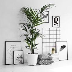 Evde bitkilere yer açın #dekoraman #dekorasyon #ev #evdekorasyonu #iskandinav #interior #decoration #inspire #scandinavian