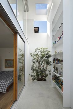"""Inside Out By: Takeshi Hosaka Architects.   I love this! This outdoor indoor space is all white, and then you can enter the actual house full of """"warm"""" wood. Such a clever design..."""