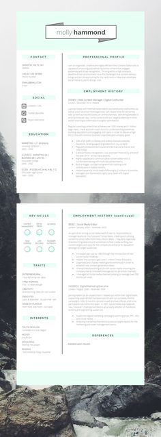 319 best resume examples images on Pinterest