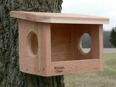 Robin Bird House - Bird House Design