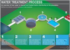 An infographic showing the basic process of water treatment. Process varies in different countries but many of the principles are the same.